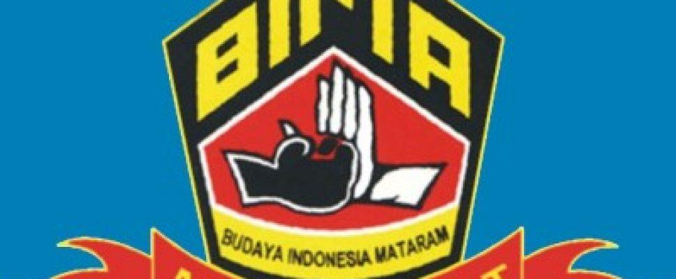 Logo Perguruan Silat Bima
